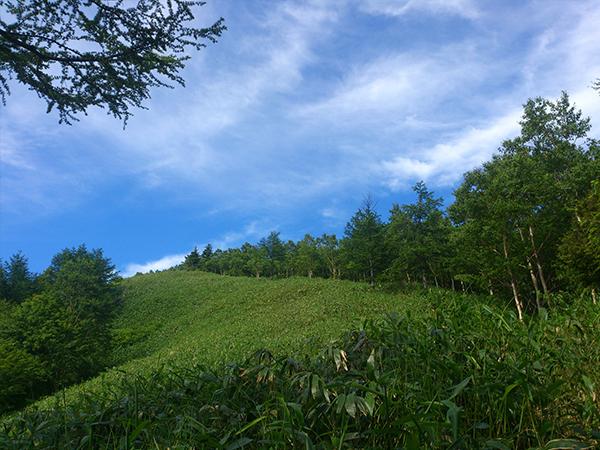 恵那山_登山道からの眺め3
