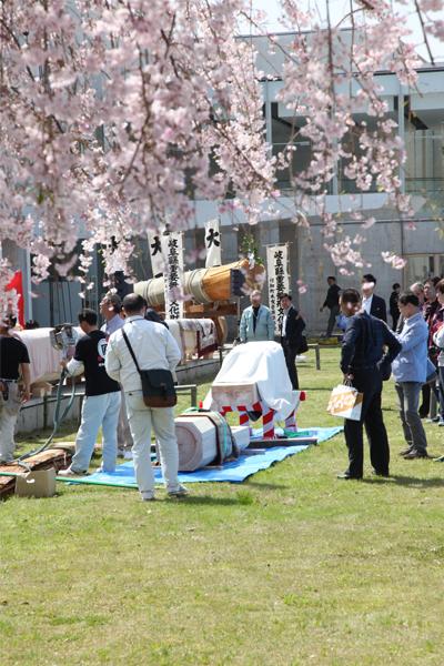 市川町_運命の木イベント_桜