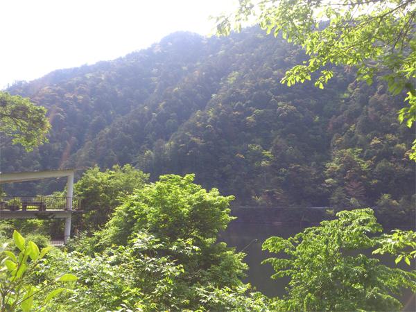 鳳来湖キャンプ場