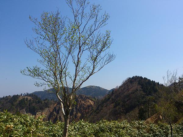 05恵那山神坂峠登山道からの眺め